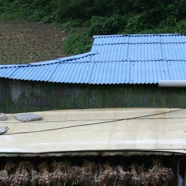 양철지붕을 기분 좋게 두드리는 봄비